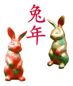 Year of the Rabbit — Stock Photo
