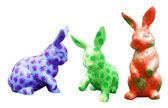 Year of the Rabbit — Stock Photo
