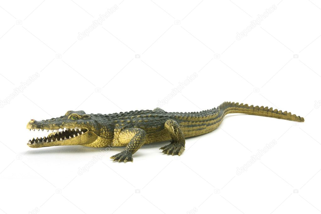 Rubber Crocodile on White Background — Stock Photo #5825135