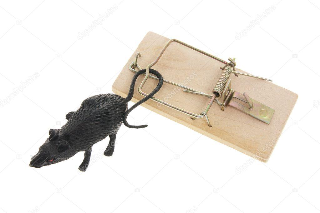 Trampa para ratones y ratas de juguete foto de stock - Trampas para ratones y ratas ...