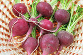 Red Radishes in Basket — Stock Photo
