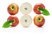 Slices of Gala Apple — Stock Photo