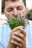 Man smelling lavender — Stock Photo