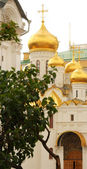 Churches of the Moscow Kremlin — Stock fotografie