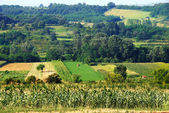 Rural Serbia — Stock Photo