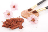 Brown powder for makeup and flowers — Stock Photo