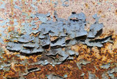 Peeling paint on a rusty metal plate — Stock Photo