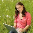 Stock Photo: Woman with laptop on a meadow