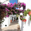 Narrow, cobbled streets and houses of Spanish Pueblo — Stock Photo