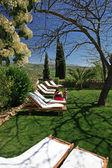 素朴なの高級ホテルや田園地帯での gardenl — ストック写真