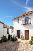 狭い石畳の通りとスペイン語の種族の家 — ストック写真