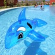 Stock Photo: Inflatable dolphin on blue swimming pool