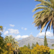 Landscape with La Concha mountain in Marbella — Foto Stock