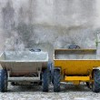 Two builders dumper trucks side by side — Stock Photo