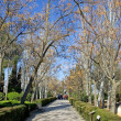Gardens of Alhambra Palace in Granada — Foto de Stock