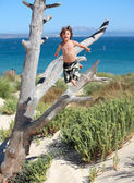 Boy jumping out of tree on vacation — Stock Photo