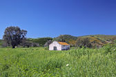Deserted farmhouse in colourful field in Spain — Stock Photo