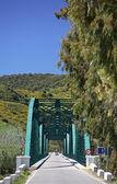 Ponte di ferro lungo, verde sul fiume in spagna — Foto Stock