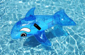 Inflatable dolphin on blue swimming pool — Stock Photo