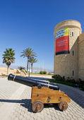 Burg und kanonen in roquetas del mar an der costa del almeria ich — Stockfoto