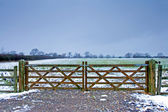 Wooden gate next to a wintery field with black sheep — Stock Photo