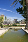 Gardens of Alhambra Palace in Granada — Stock Photo