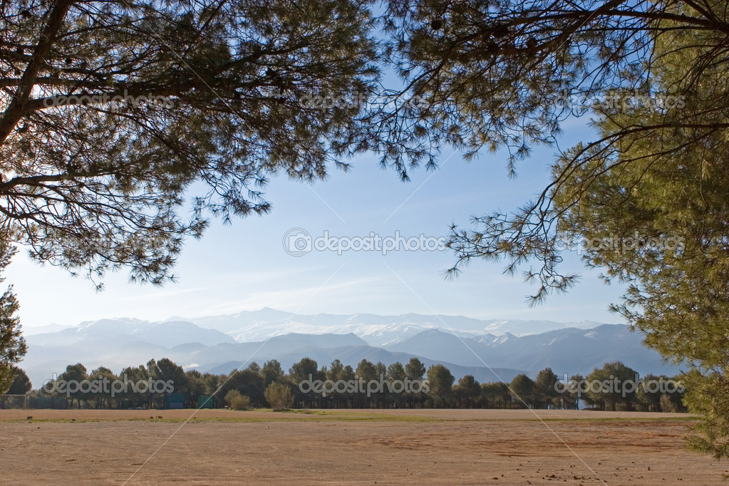 Sierra Nevada mountains near Granada in Spain, as seen through thick trees — Stock Photo #6232236