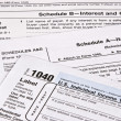 Income Tax Return — Stock Photo