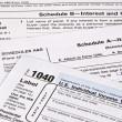 Income Tax Return — Stock Photo