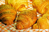 Fresh croissant — Foto Stock