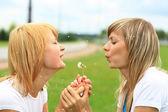 Dwie dziewczyny na zielonej trawie. — Zdjęcie stockowe