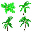 Set palm tree. Vector — Stock Vector