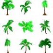 Set of various palm trees. Vector — Stock Vector