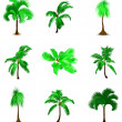 Set of various palm trees. Vector — Stock Vector #5922106