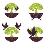Set Eco Tree with bird. Vector — Stock Vector