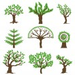 Set design tree. Vector — Stock Vector