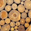 Teak wood - Stock Photo