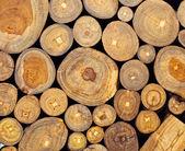 Teak wood — Stock Photo
