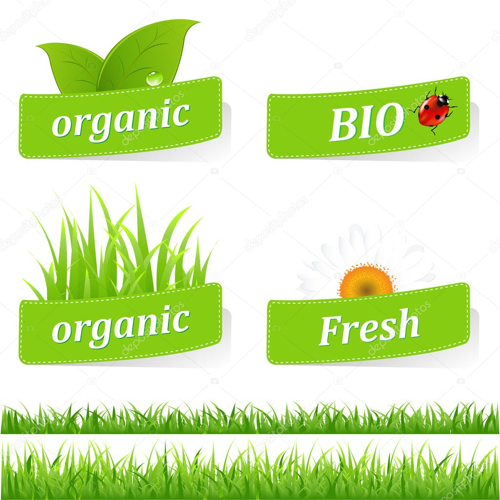 Collection Of Ecological Stickers, Isolated On White Background, Vector Illustration — Stock Vector #5399652