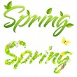Spring Words — Stock Vector