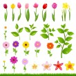 Flower Borders - 8 - Stock Vector