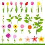 Flower Borders - 8 — Stock Vector