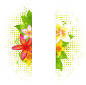 çiçek ile doğal arka plan — Stok Vektör