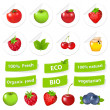 Eco Set — Stock Vector #6280158