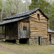 Cades Cove - Elijah Oliver House - Stock Photo