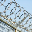 Razor Wire 4 — Stock Photo #5794721