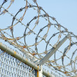 Razor Wire 4 — Stock Photo