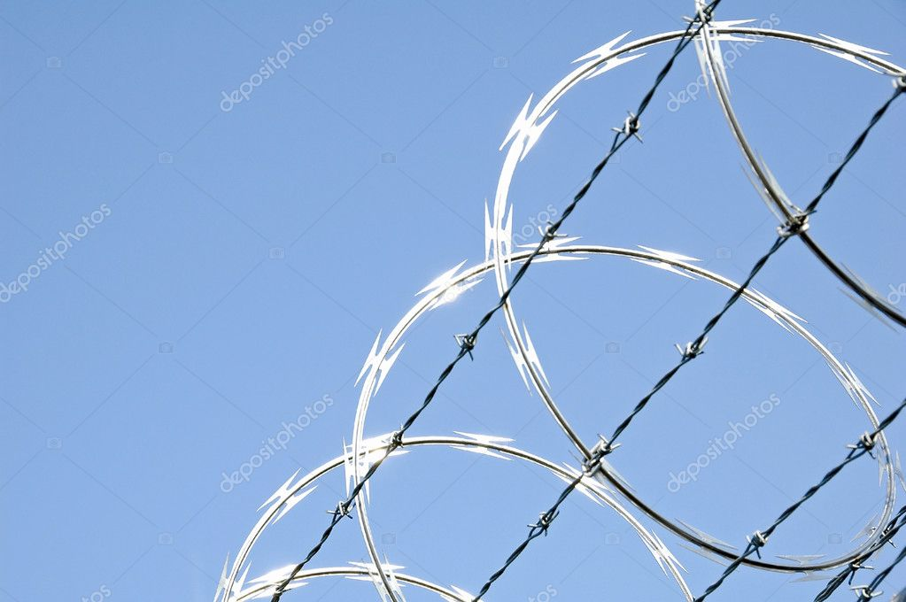 Razor wire on chain link security fence  Stock Photo #5794722