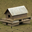 Stock Photo: Dry lake duck house
