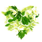Heart Made of Flowers and Leaves — Stock Photo